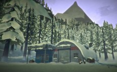играть в The Long Dark без регистрации