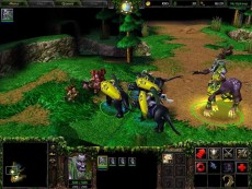 торрент игры Warcraft 3 Reign of Chaos на компьютер